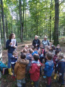A la découverte de la forêt